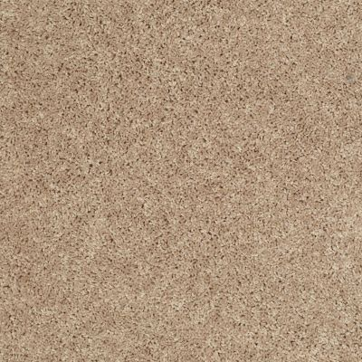 Shaw Floors Home Foundations Gold Bungalow (s) Porcelain 00115_HGN78