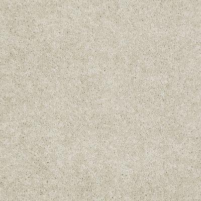 Shaw Floors Home Foundations Gold Meadow Vista 15 Crisp Linen 00109_HGP18