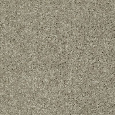 Shaw Floors Home Foundations Gold Modern Image 12′ Fossil 00761_HGP19