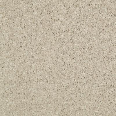 Shaw Floors Home Foundations Gold Modern Image 15′ Sand Dollar 00116_HGP20