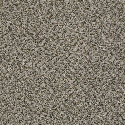 Shaw Floors Home Foundations Gold Vintage Style Dolphin 00500_HGR22