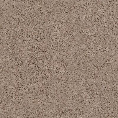 Shaw Floors Home Foundations Gold Graceful Finesse Warm Sand 00106_HGR23