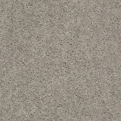 Shaw Floors Home Foundations Gold Graceful Finesse Whisper 00112_HGR23