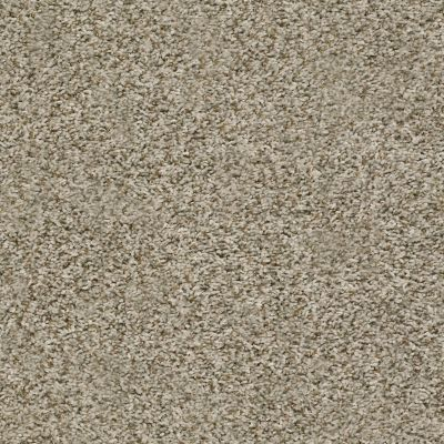 Shaw Floors Home Foundations Gold Highland Charm Flax 00112_HGR24