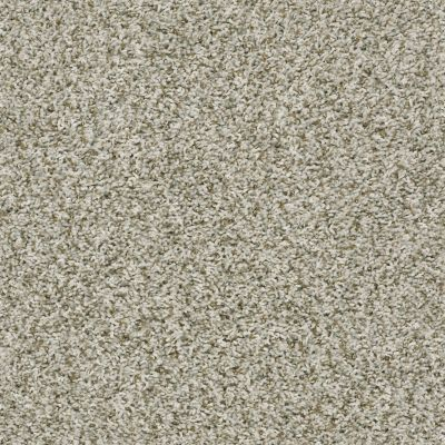 Shaw Floors Home Foundations Gold Highland Charm Stepping Stone 00123_HGR24