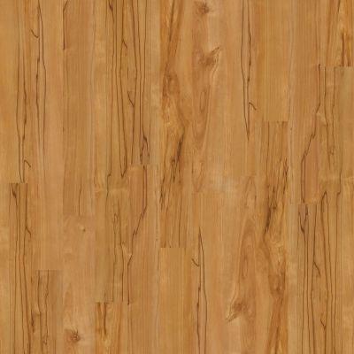 Shaw Floors Home Fn Gold Laminate Clermont Gobi 00274_HL070