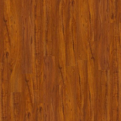 Shaw Floors Home Fn Gold Laminate Clermont Polo 00855_HL070