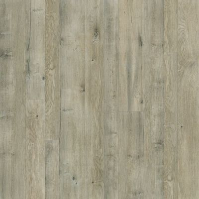 Shaw Floors Home Fn Gold Laminate Design Living Alloy 05004_HL098