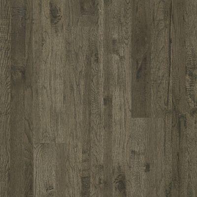 Shaw Floors Home Fn Gold Laminate Williamsburg Barrington Hckry 05002_HL367