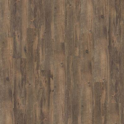 Shaw Floors Resilient Residential San Gorgonio Antico 00747_HSS43