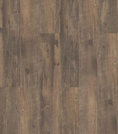 Shaw Floors Resilient Residential San Gorgonio Plus Antico 00747_HSS44