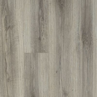 Shaw Floors Resilient Residential Trask Plus Lince 00571_HSS48