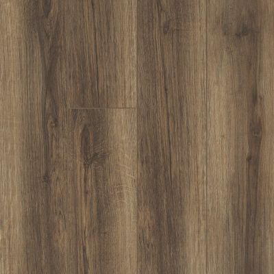 Shaw Floors Resilient Residential Trask Plus Cocco 00758_HSS48
