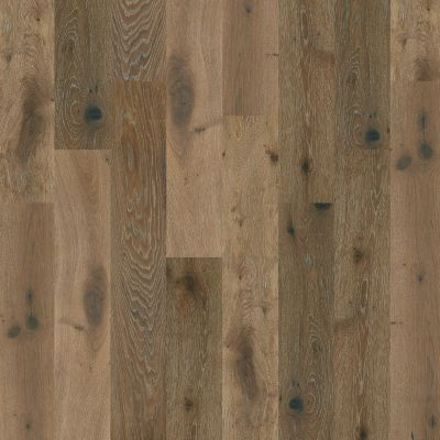 Shaw Floors Shaw Hardwoods Mammoth Baroque 05031_HSS66