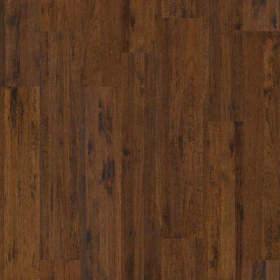 Shaw Floors Home Fn Gold Hardwood Appalachia Carter Cay 00230_HW186