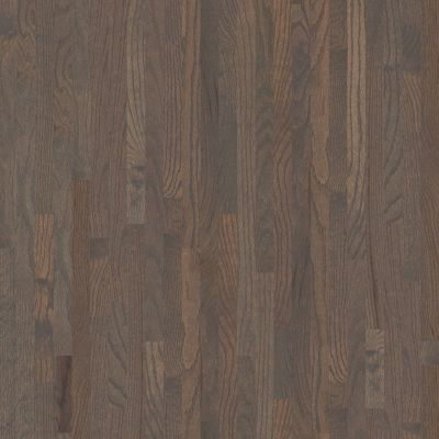 Shaw Floors Toll Brothers HS/Tuftex Family Reunion 2.25 Weathered 00543_HW1TB