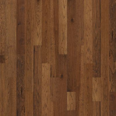 Shaw Floors Home Fn Gold Hardwood Scott's Bluff Trail 00229_HW254