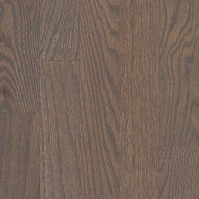 Shaw Floors Toll Brothers HS/Tuftex Family Reunion 3.25 Weathered 00543_HW2TB