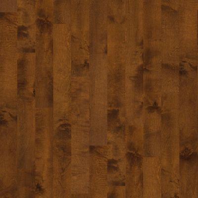 Shaw Floors Home Fn Gold Hardwood Delray Surfside 00460_HW493