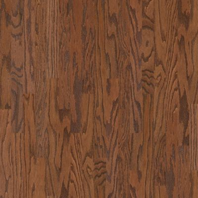 Shaw Floors Duras Hardwood All In II 3.25 Hazelnut 00874_HW581