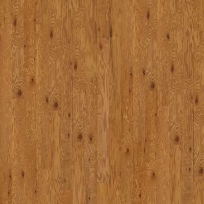 Shaw Floors Duras Hardwood All In II 5 Caramel 00223_HW582