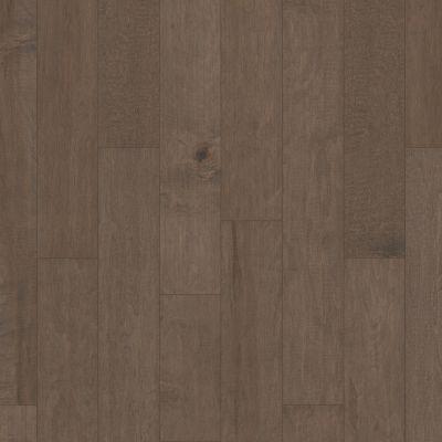 Shaw Floors Duras Hardwood Gulf Breeze Windsurf Lg 05034_HW591