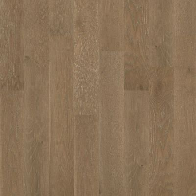 Shaw Floors Home Fn Gold Hardwood Aston Hall Majesty 07014_HW637