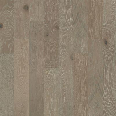 Shaw Floors Home Fn Gold Hardwood Aston Hall Viceroy 09010_HW637
