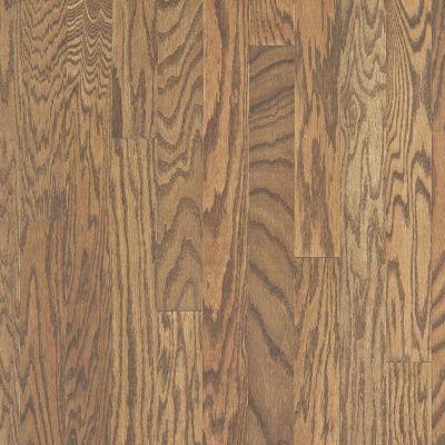 Shaw Floors Home Fn Gold Hardwood Rhapsody 3 Leather 00914_HW674