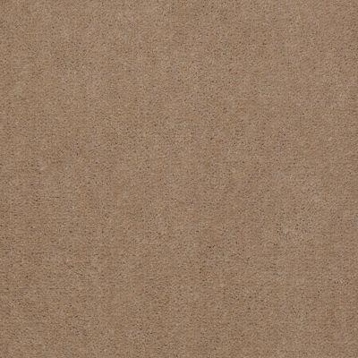 Patcraft Encore Collection Windsweptencore Grain 00144_I0200