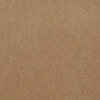 Patcraft Encore Collection Windsweptencore Llama 00156_I0200