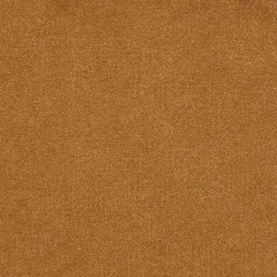Patcraft Encore Collection Windsweptencore Saffron 00245_I0200