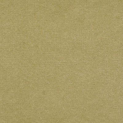 Patcraft Encore Collection Windsweptencore Lichen 00318_I0200
