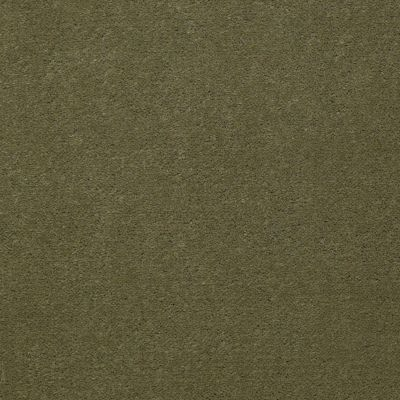 Patcraft Encore Collection Windsweptencore Herb 00323_I0200