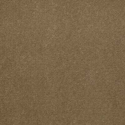 Patcraft Encore Collection Windsweptencore Sesame 00756_I0200