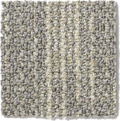 Philadelphia Commercial Rendered Bark Gray Birch 00505_J0177