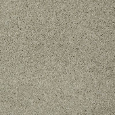 Shaw Floors St Jude Butterfly Kisses 1 Wood Ash 00159_JD300