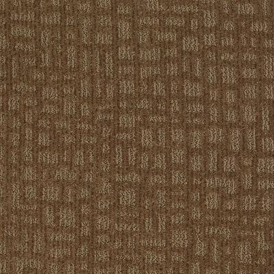 Shaw Floors St Jude Star Date Dried Raisin 00741_JD324