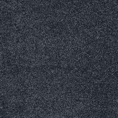 Shaw Floors St Jude Sweet Smiles Blue Slate 00451_JD326