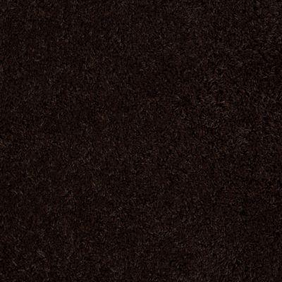 Anderson Tuftex St Jude Celebrity Chocolate Flip 00779_JD701