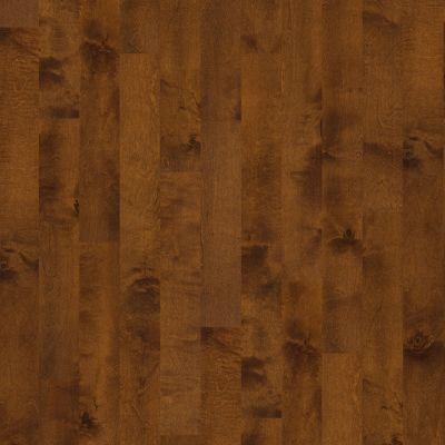 Shaw Floors Lennar Homes Briar Grove 5 Surfside 00460_LR905