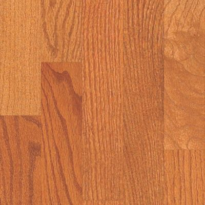 Shaw Floors Lennar Homes Westridge 3.25 Gunstock 00609_LR924