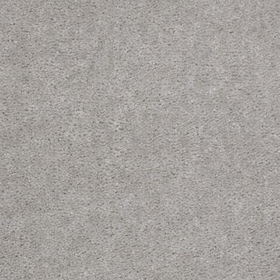 Shaw Floors Cedar Creek Seagull 01500_LS001