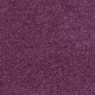 Shaw Floors Cedar Creek Grape 01903_LS001