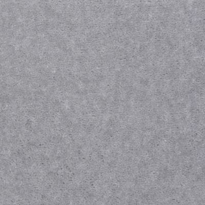 Shaw Floors Ash Brook Dublin Grey 03501_LS003