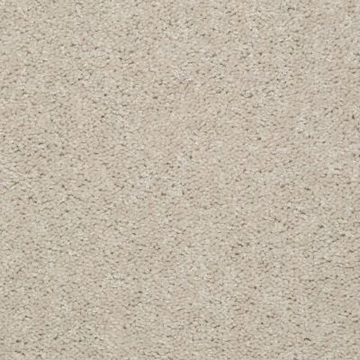 Shaw Floors Deerwood II 15 Marble 55150_LS056