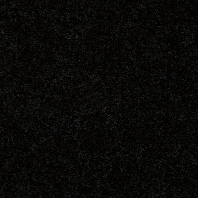 Shaw Floors Deerwood II 15 Coal Black 55502_LS056