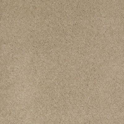 Shaw Floors Nfa/Apg Barracan I Panama 00700_NA001