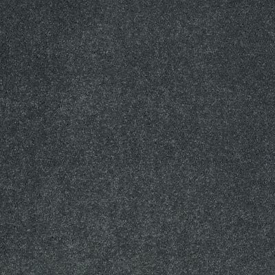 Shaw Floors Nfa/Apg Barracan Iv Windermere Lake 00402_NA004