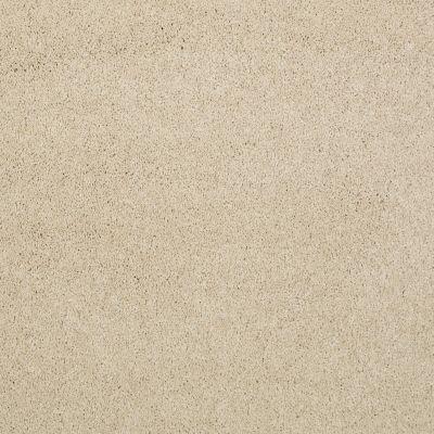 Shaw Floors Nfa/Apg Barracan Classic I Yearling 00107_NA074